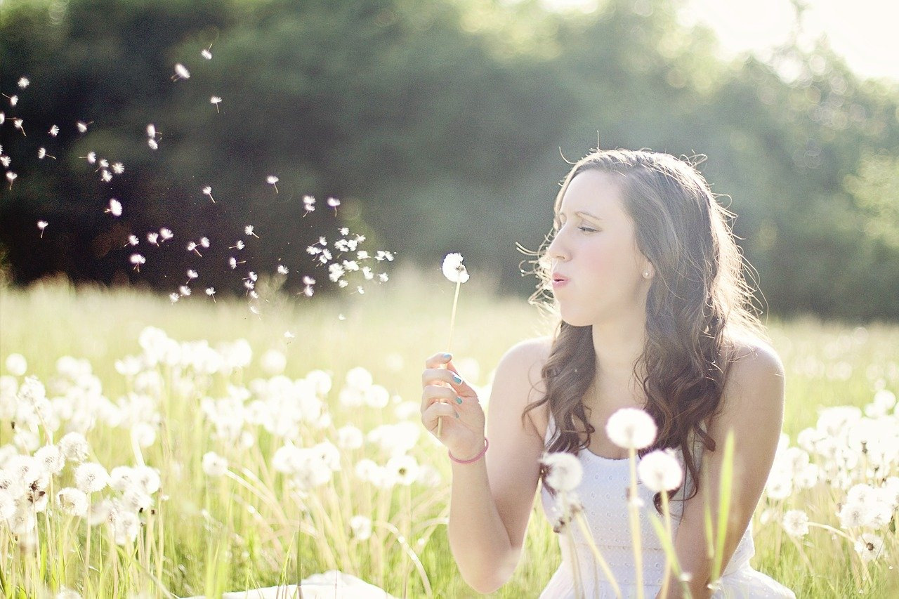 dandelions, woman, blowing